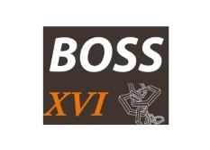 BOSS XVI Symposium